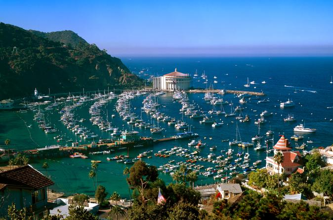 catalina-island-day-tripping